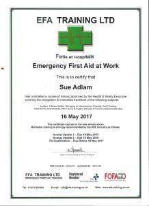 First Aid Certificate 001